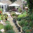 精选了莉莎(杨玉兰)去年底给我邮递来她在伦敦的家好几十张照片,诺大的庭院就是她一人搞定的哟!