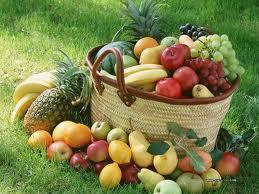 fruits03